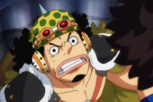 One Piece 989 Vostfr